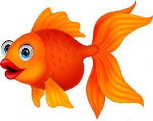 Золота рибина